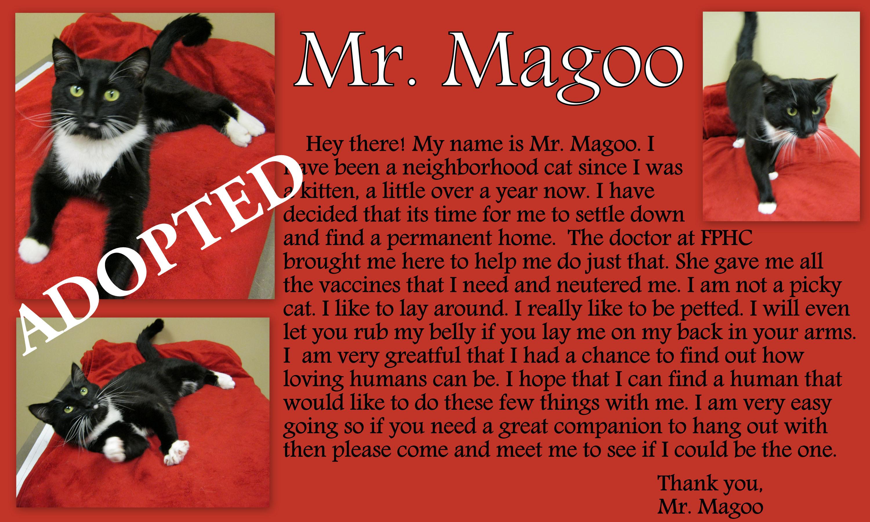 Mr. Magoo-2